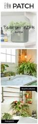 Best Plant For Bathroom by Best 20 Best Plants For Bedroom Ideas On Pinterest Plants