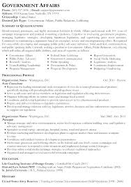 Government Resume Format Sample Plain Text Beautiful