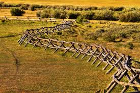Rustic Buck Rail Fence