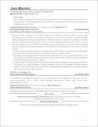 Mining Resume Examples Australia 28 Doc Resumes 2017 Executive Of 16