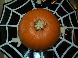 Libbys Canned Pumpkin Uk by How To Prepare U0026 Cook Fresh Pumpkin Delishably