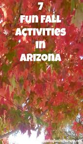 Pumpkin Patch Farms In Phoenix Az by 7 Fun Fall Activities In Arizona Meatloaf And Melodrama
