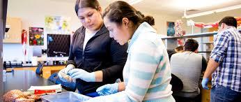 Unt Faculty Help Desk by Resources Unt Dallas