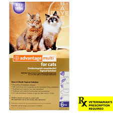 heartgard for cats heartworm medication heartgard heartgard for dogs cats