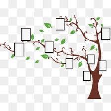 l arbre a cadre le tronc de l arbre png dossiers images vecteurs et psd