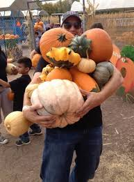 Las Cruces Pumpkin Patch Maze by Mesilla Valley Maze Home Facebook