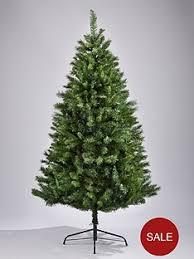 Christmas Tree Saplings Ireland by Christmas Trees Traditional Trees Littlewoods Com