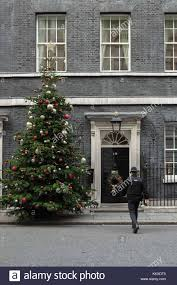 18ft 6 Nord Fur Christmas Tree Outside Number 10 Downing Street Provided By Robert Morgan Of Gower Fresh Trees In Swansea