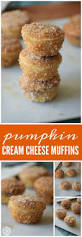 Libbys Marbled Pumpkin Cheesecake Recipe by 150 Best All Things Pumpkin Images On Pinterest Fall Recipes
