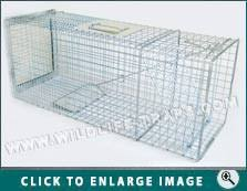 live cat trap humane feral cat traps buy cat traps folding cat trap live