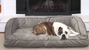 best sofa material for dogs centerfieldbar com