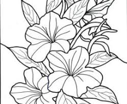 9 Tropical Flower Coloring Pages