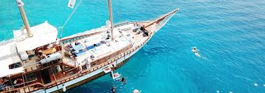 Tours And Excursions In Greece : Keytours.gr San Diego Cruise Excursions Shore Cozumel Playa Mia Grand Beach Break Day Pass Excursion Enjoyment Tasure Coast Coupon Book By Savearound Issuu 242 Outer Banks Coupons And Deals For 2019 Outerbankscom Costco Travel Review Good Deal Or Not Alaska Tours The Best Quill Coupon Codes October Extreme Pizza Excursions Group Code Travelocity Get On Flights Hotels More 20 Rio Carnival 3 Private Tour Celebrity Eclipse Makemytrip Offers Oct 2425 Min Rs1000 Off Cruisedirect Promo Codes Groupon