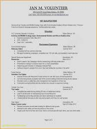 Graphic Design Resume Samples New Examples Luxury Proffesional Format