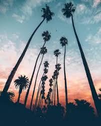 Lsleofskye Los Angeles California Love It
