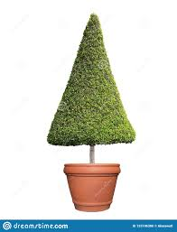 Nearly Natural 6 IndoorOutdoor UV Resistant Ficus Artificial
