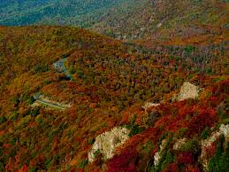 Mountain King Christmas Trees Color Order by 13 Destinations To See Fall Leaves In The South Southern Living