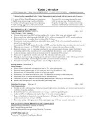 Resume Examples For Parts Manager Unique Jewelry Store Sample