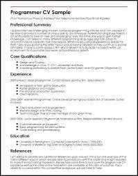 Sample Programmer Resume 8