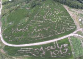 Best Pumpkin Patch Des Moines by Des Moines Corn Maze Pumpkin Patch Party U0026 Wedding Venue