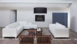 Comfy Minimalist Living Room