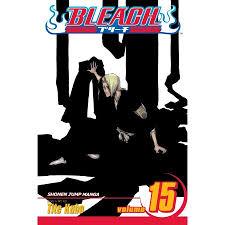 Bleach Vol 15