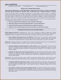 100 Truck Driver Job Description For Resume Courier Thomasdegaspericom