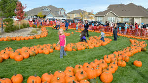 Pumpkin Patches Around Colorado Springs by Pumpkins Galore U2013 Fort Carson Mountaineer