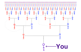 Capet Family Tree Group All Your Extended Family Genealogy Efforts