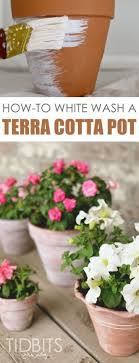 Rustic White Washed Terra Cotta Pots