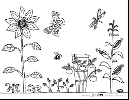 Free Vegetable Garden Coloring Pages Sheets Printable Flower Full Size