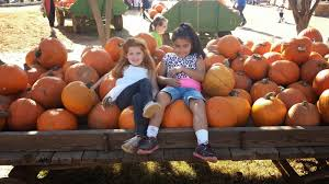 Bishop Pumpkin Farm Wheatland California by My Love For Placer County