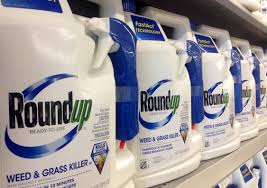 Roundup Or The Chemical Glyphosate Is A Very Common Herbicide Used To Kill Weeds Mike Mozart Flickr CC BY