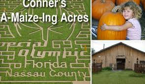 Conners Pumpkin Patch Jacksonville Fl by Connor U0027s A Maize Ing Acres Jacksonville Deal Saving The Family Money