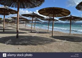 100 Wooden Parasols Beautiful Sand Beach Solaris With Lots Of Wooden Parasols