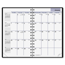 At A Glance DayMinder Pocket Planner LD Products
