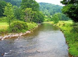 Sinks Of Gandy Directions by One Of My Favorite Wv Trout Streams Glady Fork Of Dry Fork Of