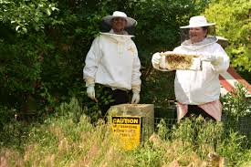 An Oakland County Chef Installs Thousands Of Bees At His ... Bkeepers Report Honey Bee Losses Down But Problem Remains 100 Backyard Bkeeping A Beginners Michigan Bkeepers Fight To Keep Hives In Backyard Photos Ann Arbor Shutterbugs Photography Mi Meetup Events Community Farm Of Bees Radio Earth Words October 2016 Chance Save Some Bees The Prospect Home Matthaei Botanical Gardens And Nichols Arboretum So You Think Want Be A Bkeeper Robin Hills Its All About The For This Grosse Ile Bkeeper Made 317 Current By Adams Street Publishing Co Issuu