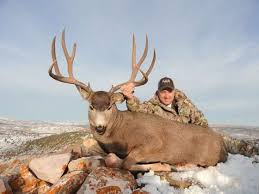 Hunting Guide Hunting Outfitter