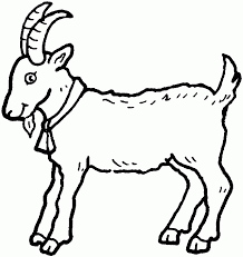 6 Pics Of Printable Coloring Pages Goat