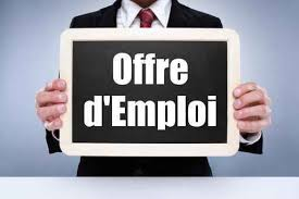 offre d emploi bureau veritas français du monde adfe hambourg