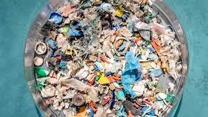 100 Seabirds Food Truck Plastic Pollution Affects Sea Life Throughout The Ocean