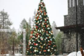 Christmas Tree Shop Scarborough Maine Hours by Mac Hammond Ministries Archives Living Word Christian Center