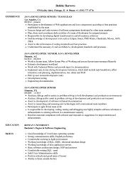 Download Java Developer Senior Resume Sample As Image File