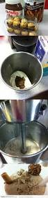 German Nutella Bathroom Prank by 33 Best Nutella Jokes Images On Pinterest Funny Disney Funny