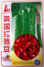 Free Shipping Garden Green Beans Seeds Vegetables 20g Bag The British Red Kidney