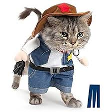 costume for cat mikayoo pet cat costumes the cowboy