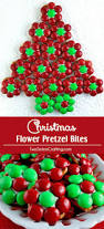 Christmas Tree Shop Foxboro Ma by 18 Best Adventures To Have Ma Images On Pinterest