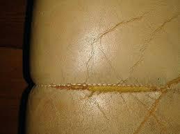 réparer un canapé en cuir reparer canape simili cuir renovation canape cuir reparation