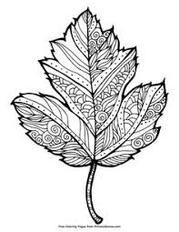 Fall Coloring Page Maple Leaf